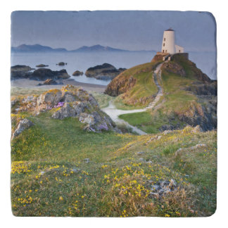 Twr Mawr Lighthouse On Llanddwyn Island Trivet