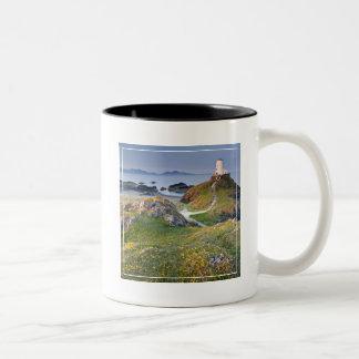Twr Mawr Lighthouse On Llanddwyn Island Two-Tone Coffee Mug