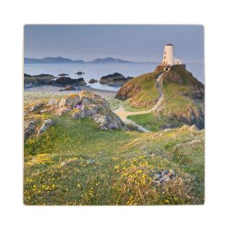 Twr Mawr Lighthouse On Llanddwyn Island Wood Coaster