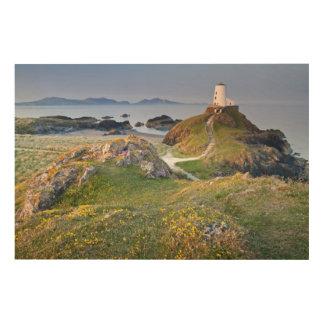 Twr Mawr Lighthouse On Llanddwyn Island Wood Wall Art