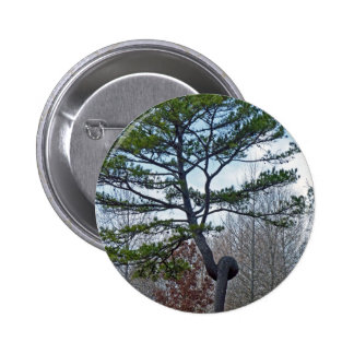 Twsited Tree Pinback Button