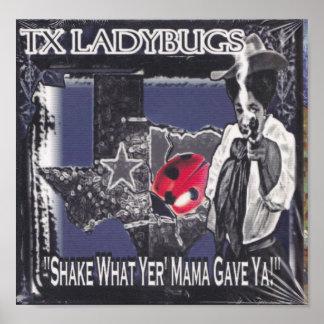 TX LadyBugs Shake IT Poster