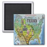 TX USA Map Refrigerator Magnet