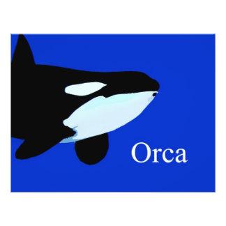 """txt gráfico subacuático de la orca de la orca folleto 8.5"""" x 11"""""""