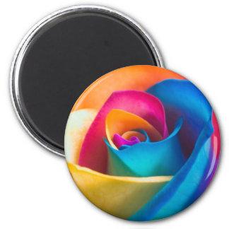 Tye Dye single rose 2 Inch Round Magnet