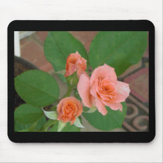 Tyler Roses Mouse Pad