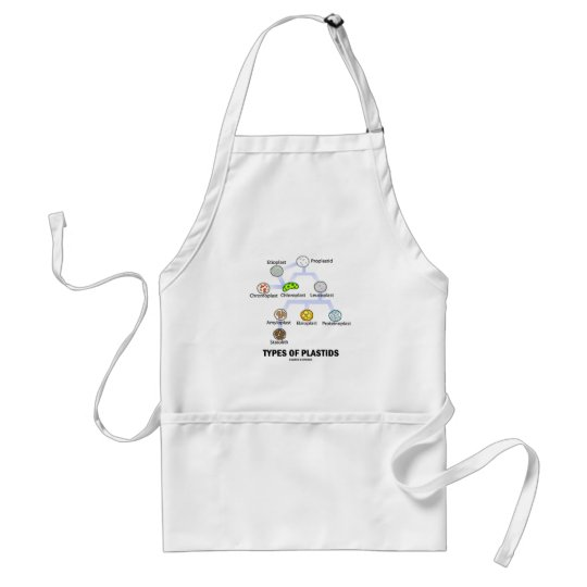 Types Of Plastids Adult Apron