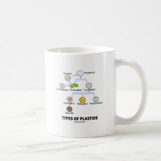 Types Of Plastids Classic White Coffee Mug