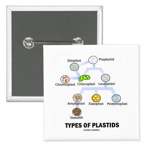 Types Of Plastids Pinback Buttons