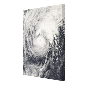 Typhoon Dolphin in the Philippine Sea Canvas Print
