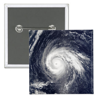 Typhoon Higos Pins