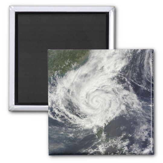 Typhoon Parma 2 Inch Square Magnet