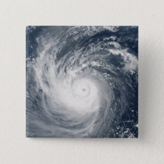 Typhoon Taim Button