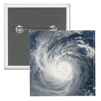 Typhoon Taim Pin