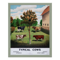 Typical Cows Poster