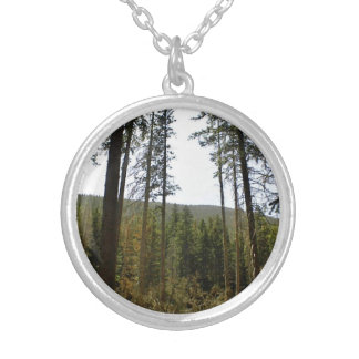Typical hillside with lot of tall trees necklace