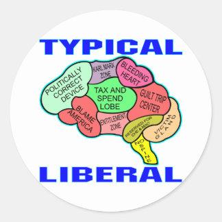 Typical Liberal Socialist Brain Classic Round Sticker