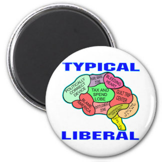 Typical Liberal Socialist Brain Magnet
