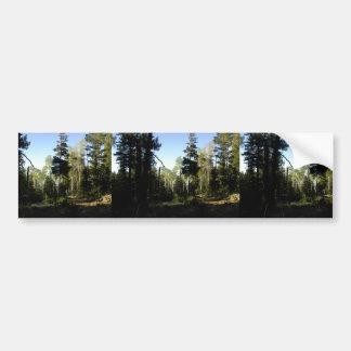 Typical Mixed Tree Conifer Zone On Humphreys Peak Bumper Sticker