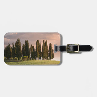 Typical Tuscan landscape of cypress trees Luggage Tag