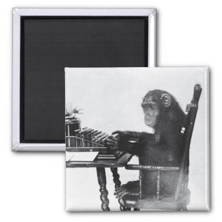 Typing Monkey 2 Inch Square Magnet