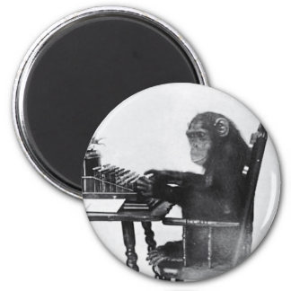 Typing Monkey Magnet