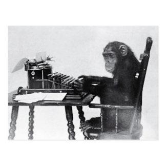 Typing Monkey Postcard