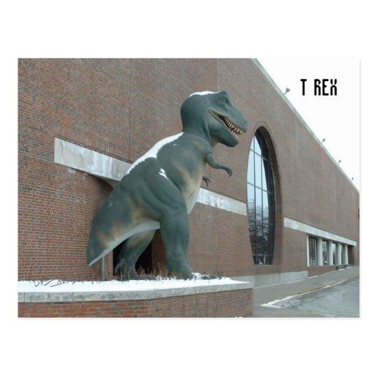 Tyrannosaurus Rex Postcard