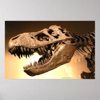 Tyrannosaurus Rex Poster
