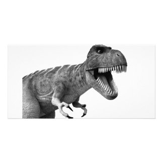 Tyrannosaurus Rex Tarjetas Fotograficas