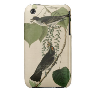Tyrant fly-catcher Case-Mate iPhone 3 case