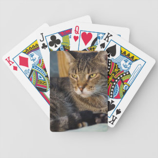 Tyson Bicycle Playing Cards