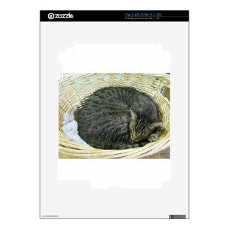 Tyson Calcomanías Para El iPad 2
