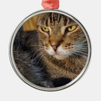 Tyson Metal Ornament