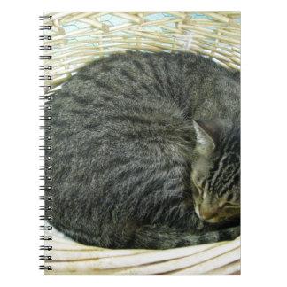 Tyson Notebook
