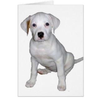 Tyson- Still A Pup Card