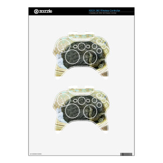 Tyson Xbox 360 Controller Skins