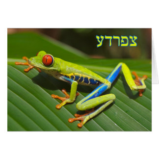 "Tzefardea In Hebrew Meaning ""Frog"" Greeting Card"