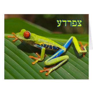 "Tzefardea Means, ""Frog,"" In Hebrew Card"