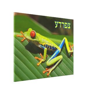 "Tzfardea (In Hebrew Text) Means ""Frog"" Canvas Print"
