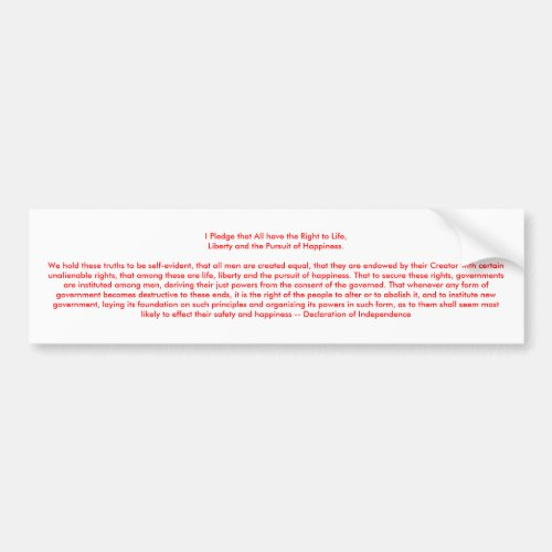 U Create Declaration of Independence Bumper Sticker