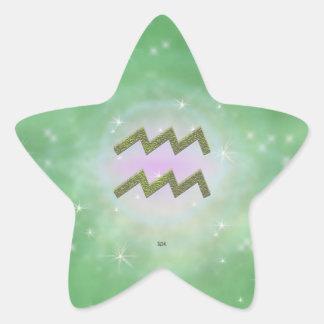U Pick Color/ Aquarius Zodiac Sign Star Sticker