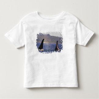 U.S.A., Alaska, Inside Passage Surfacing Orca Toddler T-shirt