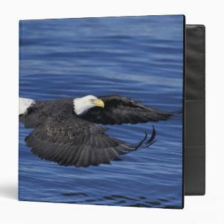 U.S.A., Alaska, Kenai Peninsula Bald eagle 3 Ring Binders