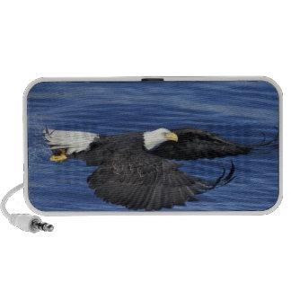 U.S.A., Alaska, Kenai Peninsula Bald eagle Mp3 Speaker
