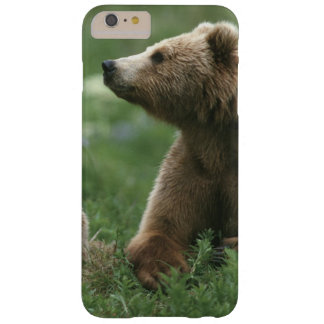 U.S.A., Alaska, Kodiak Two sub-adult brown bears Barely There iPhone 6 Plus Case