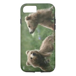 U.S.A., Alaska, Kodiak Two sub-adult brown bears iPhone 8/7 Case