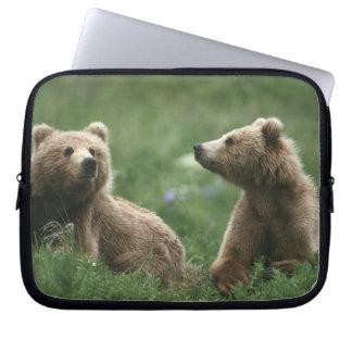 U.S.A., Alaska, Kodiak Two sub-adult brown bears Laptop Sleeve