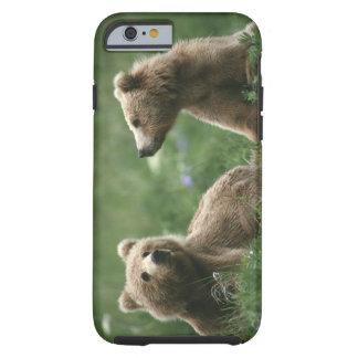 U.S.A., Alaska, Kodiak Two sub-adult brown bears Tough iPhone 6 Case