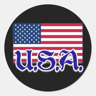 U.S.A. American Apparel y objetos de recuerdo Pegatina Redonda